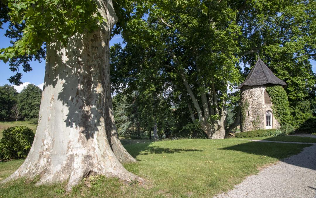 Tournage vidéo à La Bonne Étoile dans la Drôme