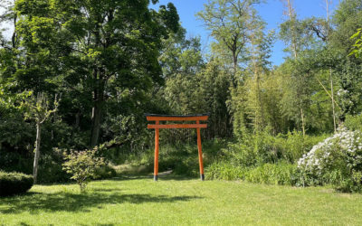 Reportage photos et vidéos : Jardin Zen d'Erik Borja en Drôme