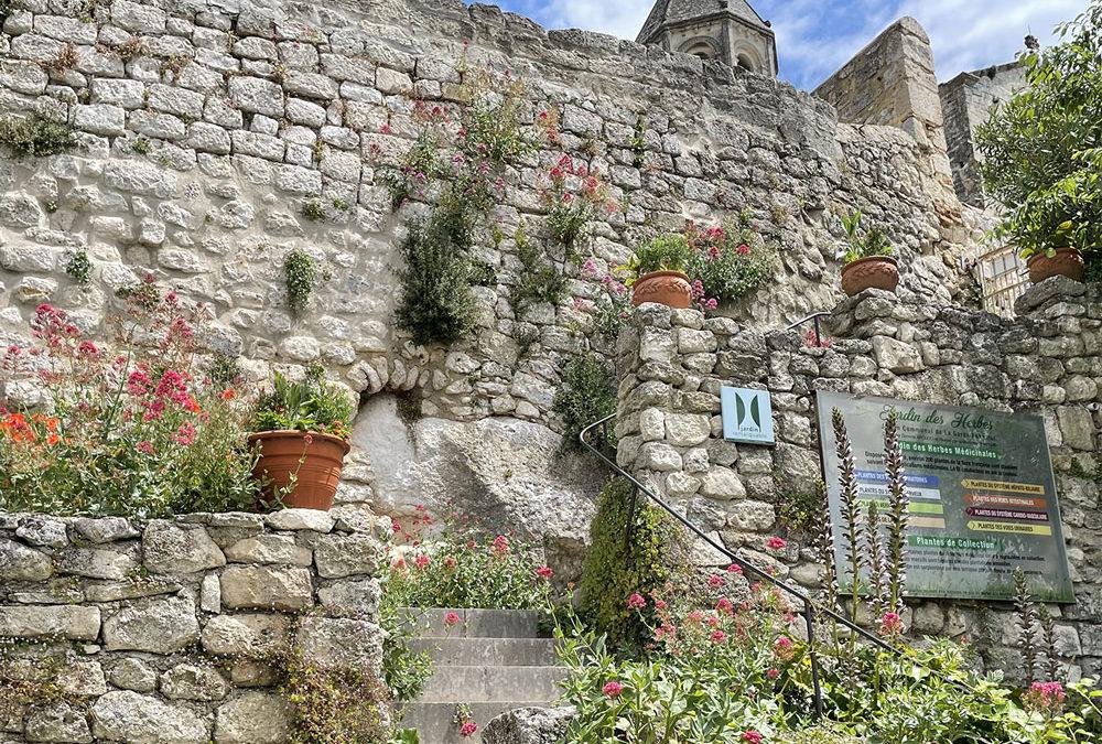 Reportage vidéo : le Jardin des Herbes en Drôme
